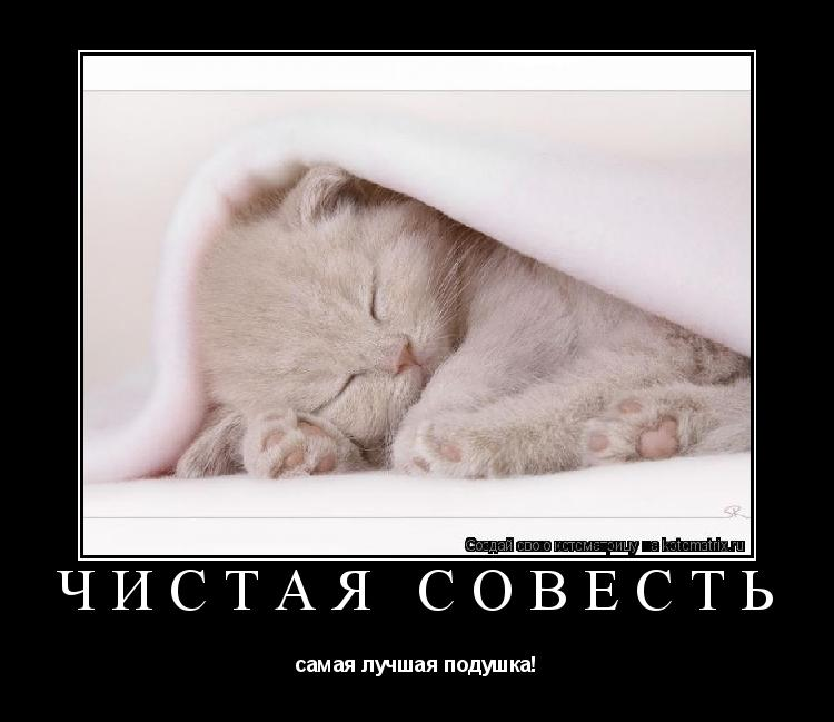 Котоматрица: ЧИСТАЯ СОВЕСТЬ самая лучшая подушка!