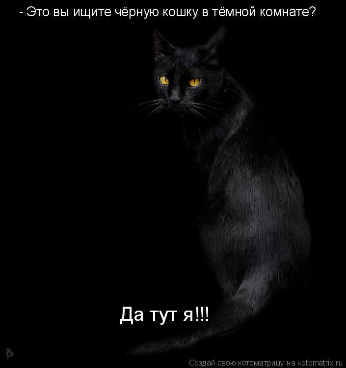 Котоматрица: - Это вы ищите чёрную кошку в тёмной комнате? Да тут я!!!