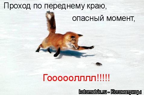 Котоматрица: Проход по переднему краю, опасный момент, Гооооолллл!!!!!