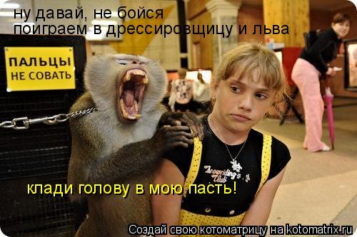 Котоматрица: ну давай, не бойся поиграем в дрессировщицу и льва клади голову в мою пасть!