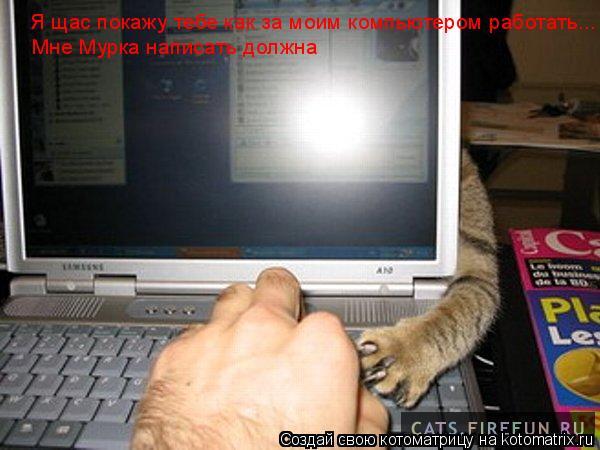 Котоматрица: Я щас покажу тебе как за моим компьютером работать... Мне Мурка написать должна
