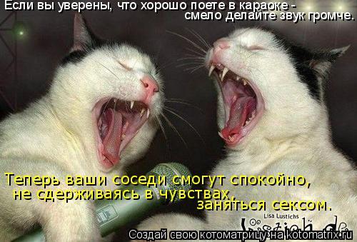 Котоматрица: Если вы уверены, что хорошо поете в караоке -  смело делайте звук громче. Теперь ваши соседи смогут спокойно, не сдерживаясь в чувствах,  заня