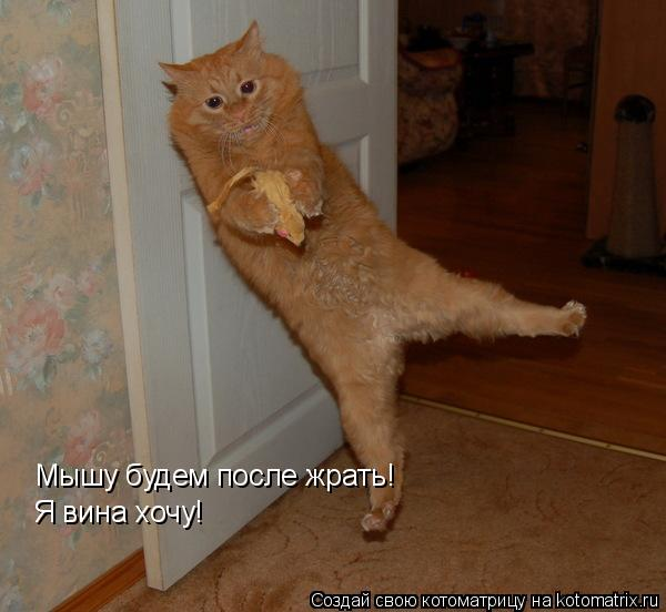 Котоматрица: Мышу будем после жрать! Я вина хочу!
