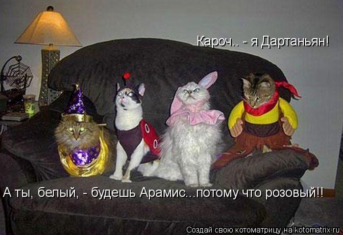 Котоматрица: Кароч.. - я Дартаньян!  А ты, белый, - будешь Арамис...потому что розовый!!