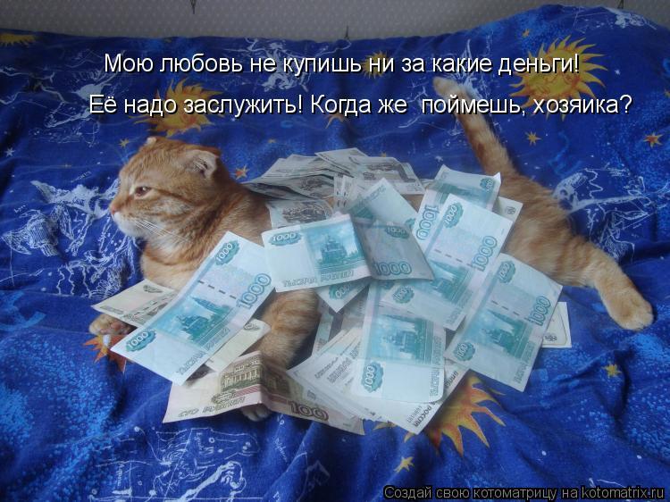 Котоматрица: Мою любовь не купишь ни за какие деньги! Её надо заслужить! Когда же  поймешь, хозяика?