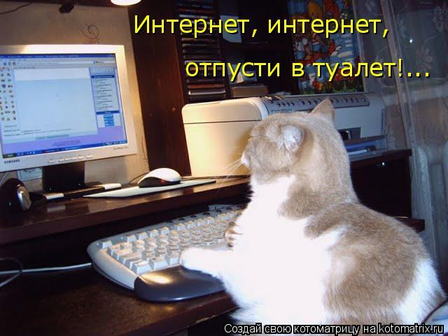 Котоматрица: Интернет, интернет, отпусти в туалет!...