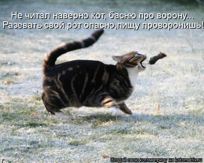 Котоматрица: Разевать свой рот опасно,пищу проворонишь! Не читал наверно кот, басню про ворону...