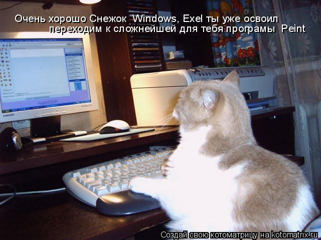 Котоматрица: Очень хорошо Снежок  Windows, Exel ты уже освоил  переходим к сложнейшей для тебя програмы  Peint