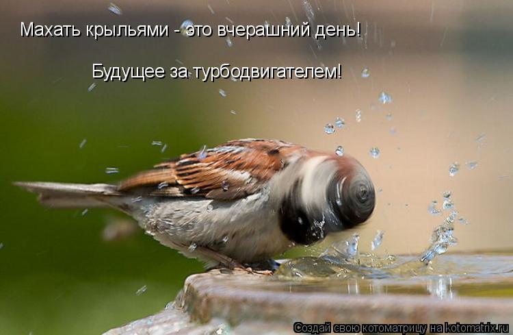 Котоматрица: Махать крыльями - это вчерашний день! Будущее за турбодвигателем!