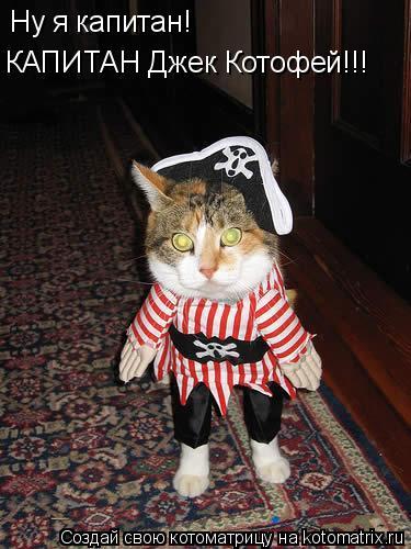 Котоматрица: Ну я капитан! КАПИТАН Джек Котофей!!!
