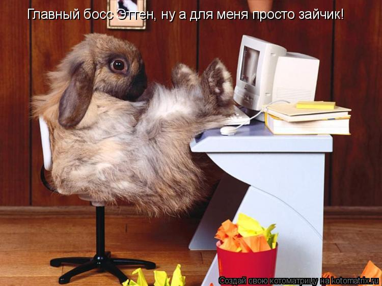 Котоматрица: Главный босс Эттен, ну а для меня просто зайчик!