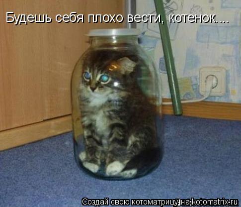 Котоматрица: Будешь себя плохо вести, котенок....