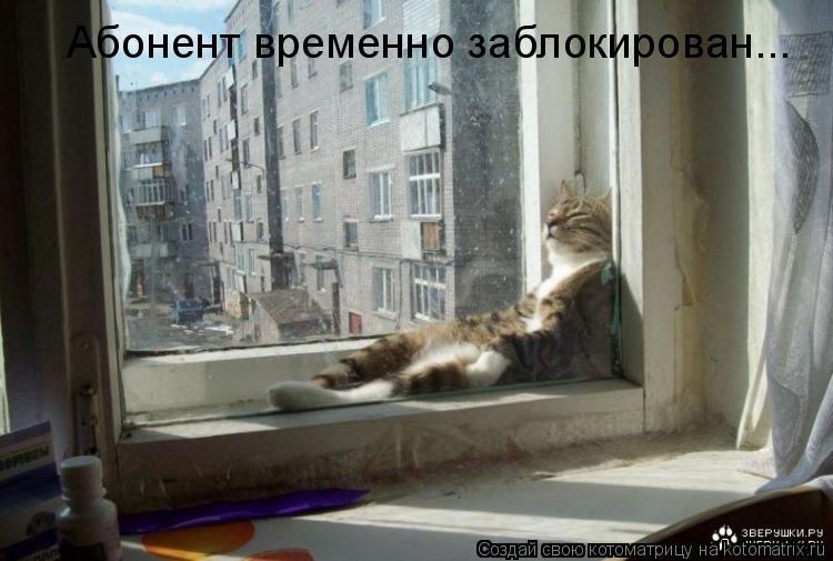Котоматрица: Абонент временно заблокирован...