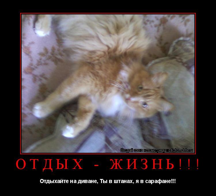 Котоматрица: ОТДЫХ - ЖИЗНЬ!!! Отдыхайте на диване, Ты в штанах, я в сарафане!!!