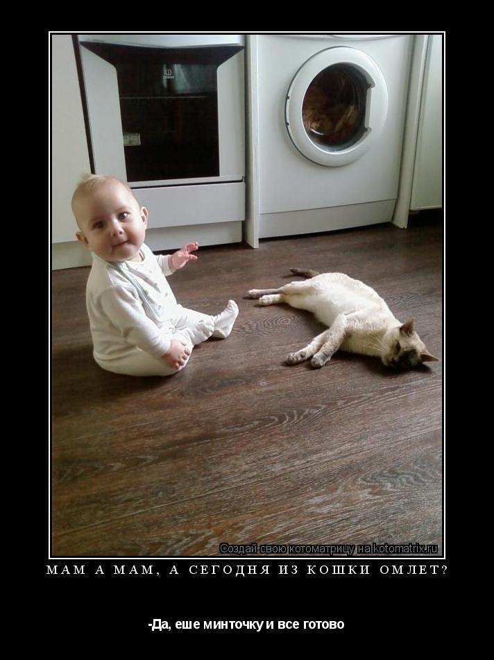 Котоматрица: мам а мам, а сегодня из кошки омлет? -Да, еше минточку и все готово