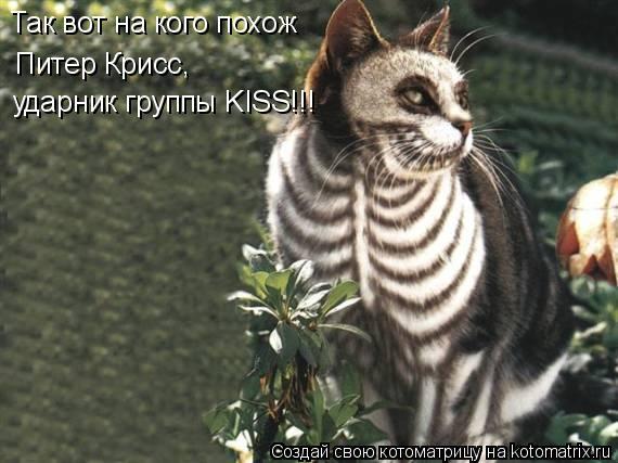 Котоматрица: Так вот на кого похож  Питер Крисс, ударник группы KISS!!!