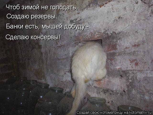 Котоматрица: Чтоб зимой не голодать, Создаю резервы: Банки есть, мышей добуду -  Сделаю консервы!