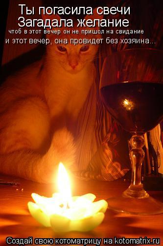 Котоматрица: Ты погасила свечи Загадала желание чтоб в этот вечер он не пришол на свидание и этот вечер, она провидет без хозяина...