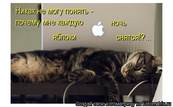 Котоматрица: Никак не могу понять - почему мне каждую ночь яблоки снятся!?...