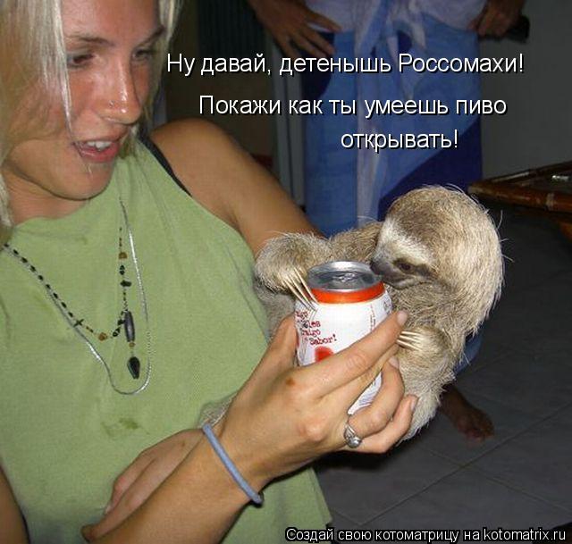 Котоматрица: Ну давай, детенышь Россомахи! Покажи как ты умеешь пиво открывать!