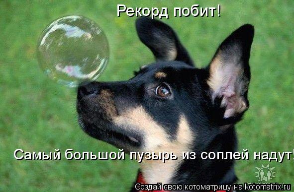 Котоматрица: Рекорд побит! Самый большой пузырь из соплей надут!