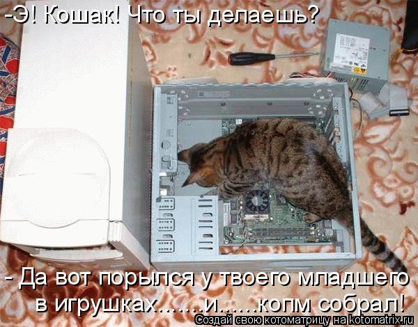 Котоматрица: -Э! Кошак! Что ты делаешь? - Да вот порылся у твоего младшего  в игрушках.......и......копм собрал!