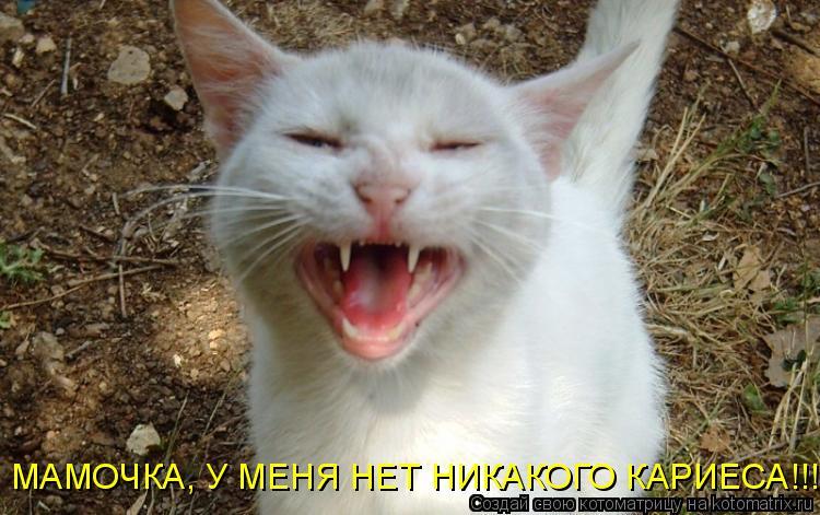 Котоматрица: МАМОЧКА, У МЕНЯ НЕТ НИКАКОГО КАРИЕСА!!!