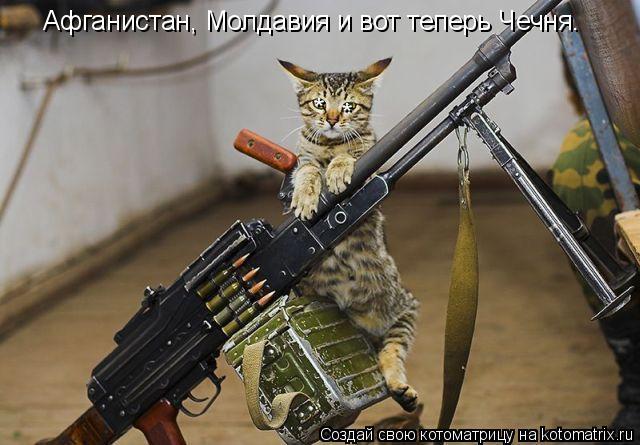 Котоматрица: Афганистан, Молдавия и вот теперь Чечня. * *