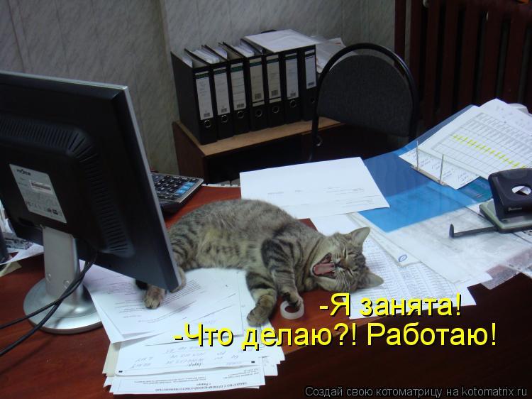 Котоматрица: -Я занята! -Что делаю?! Работаю!