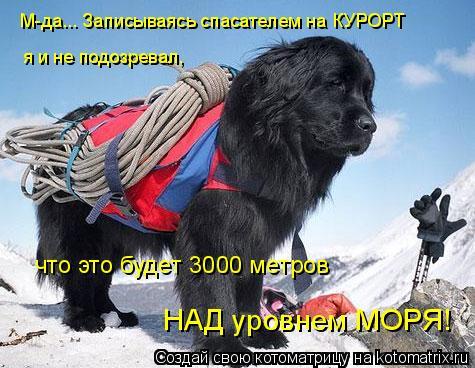 Котоматрица: М-да... Записываясь спасателем на КУРОРТ я и не подозревал, что это будет 3000 метров НАД уровнем МОРЯ!