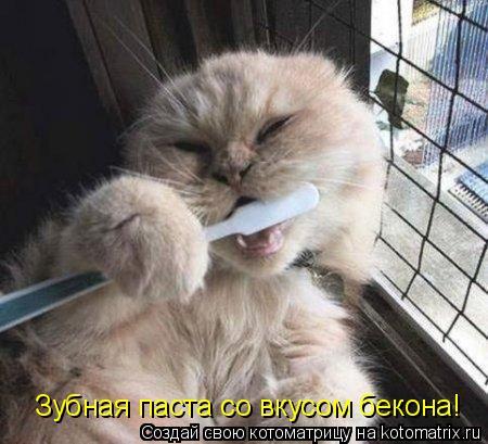 Котоматрица: Зубная паста со вкусом бекона!