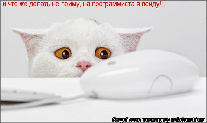 Котоматрица: и что же делать не пойму, на программиста я пойду!!!