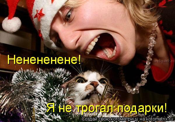 Котоматрица: Ненененене! Ненененене! Я не трогал подарки!