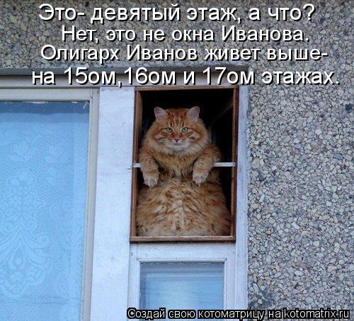 Котоматрица: Это- девятый этаж, а что? Нет, это не окна Иванова. Олигарх Иванов живет выше- на 15ом,16ом и 17ом этажах.