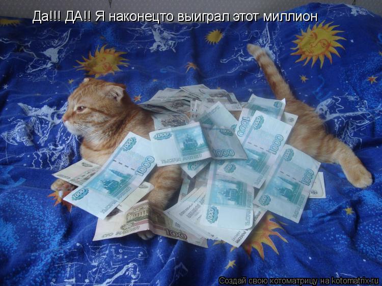 Котоматрица: Да!!! ДА!! Я наконецто выиграл этот миллион