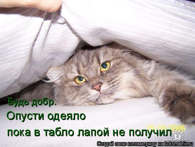 Котоматрица: Будь добр. Опусти одеяло пока в табло лапой не получил