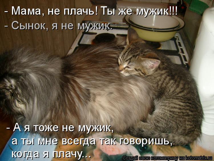 Котоматрица: - А я тоже не мужик,  а ты мне всегда так говоришь,  когда я плачу... - Сынок, я не мужик. - Мама, не плачь! Ты же мужик!!!