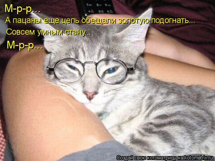 Котоматрица: М-р-р...  А пацаны еще цепь обещали золотую подогнать... Совсем умным стану... М-р-р...