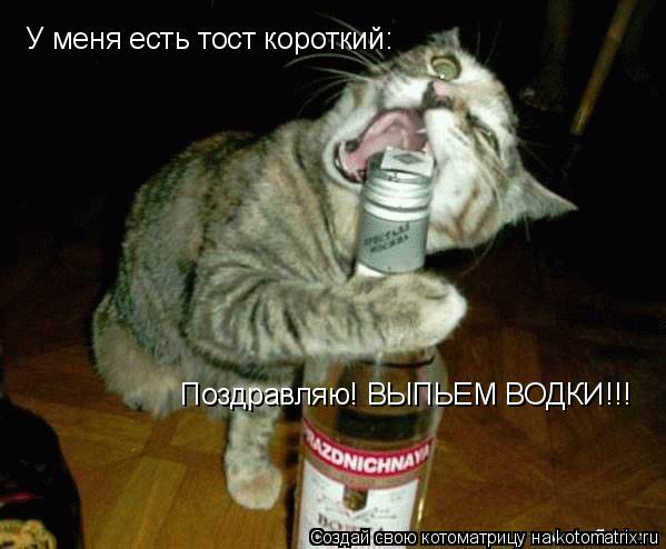 Котоматрица: У меня есть тост короткий: Поздравляю! ВЫПЬЕМ ВОДКИ!!!