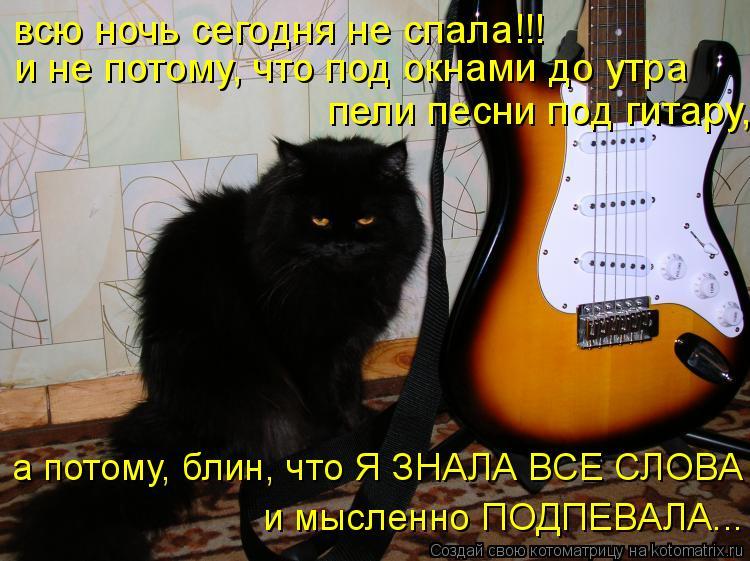 Котоматрица: и не потому, что под окнами до утра пели песни под гитару, а потому, блин, что Я ЗНАЛА ВСЕ СЛОВА и мысленно ПОДПЕВАЛА... всю ночь сегодня не спа