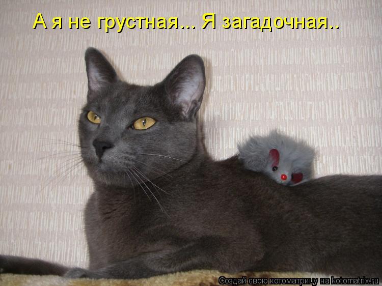 Котоматрица: А я не грустная... Я загадочная..