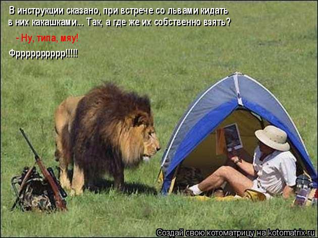 Котоматрица: В инструкции сказано, при встрече со львами кидать  в них какашками... Так, а где же их собственно взять? - Ну, типа, мяу! Фрррррррррр!!!!!