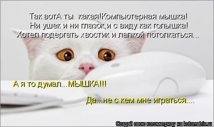 Котоматрица: Так вотА ты  какая!Компьютерная мышка! Ни ушек и ни глазок,и с виду как голышка! Хотел подергать хвостик и лапкой потолкаться... А я то думал...