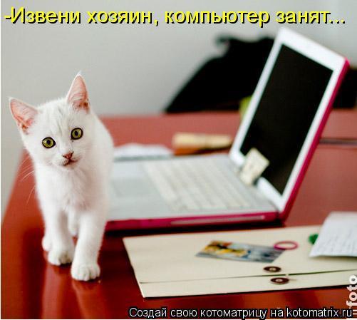 Котоматрица: -Извени хозяин, компьютер занят...