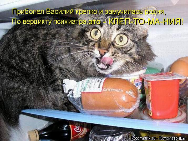 Котоматрица: Приболел Василий крепко,и замучилась родня, По вердикту психиатра, это - КЛЕП-ТО-МА-НИЯ!