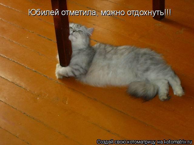 Котоматрица: Юбилей отметила, можно отдохнуть!!!
