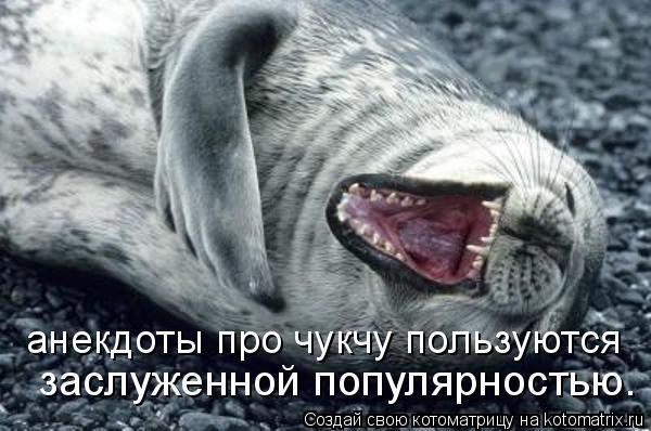 Котоматрица: анекдоты про чукчу пользуются  заслуженной популярностью.