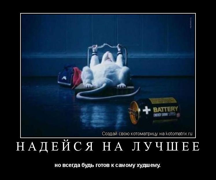 Котоматрица: надейся на лучшее но всегда будь готов к самому худшему.