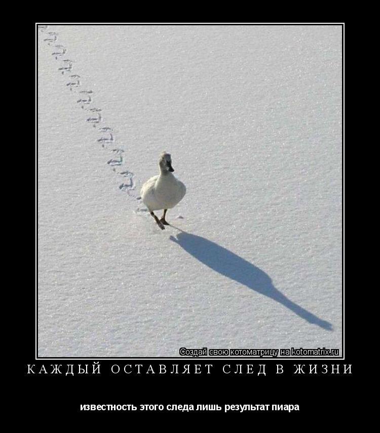 Котоматрица: Каждый оставляет след в жизни известность этого следа лишь результат пиара