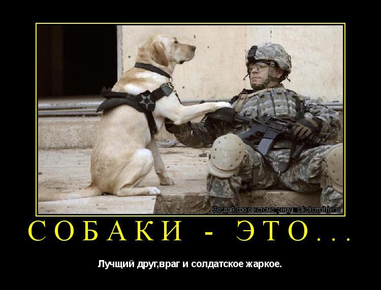 Котоматрица: Собаки - это... Лучщий друг,враг и солдатское жаркое.